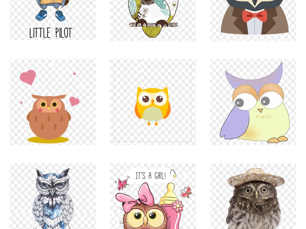 卡通可爱手绘猫头鹰动物园海报设计png素材