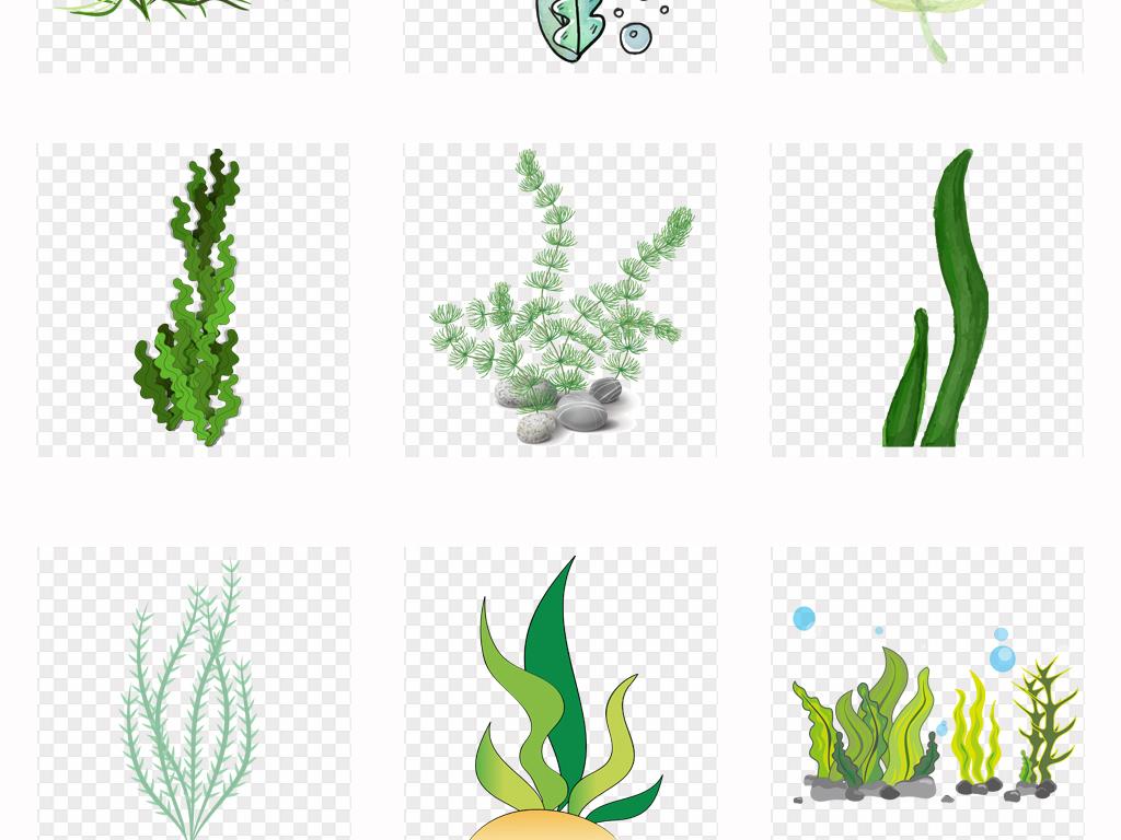 50款可爱卡通手绘海底植物海草海藻png素材