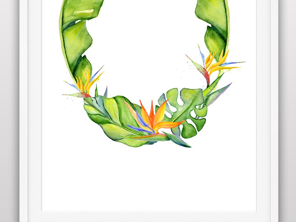 手绘植物插画
