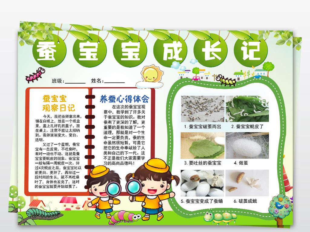手抄报|小报 环保手抄报 爱护动植物手抄报 > 养蚕小报可爱的蚕宝宝手