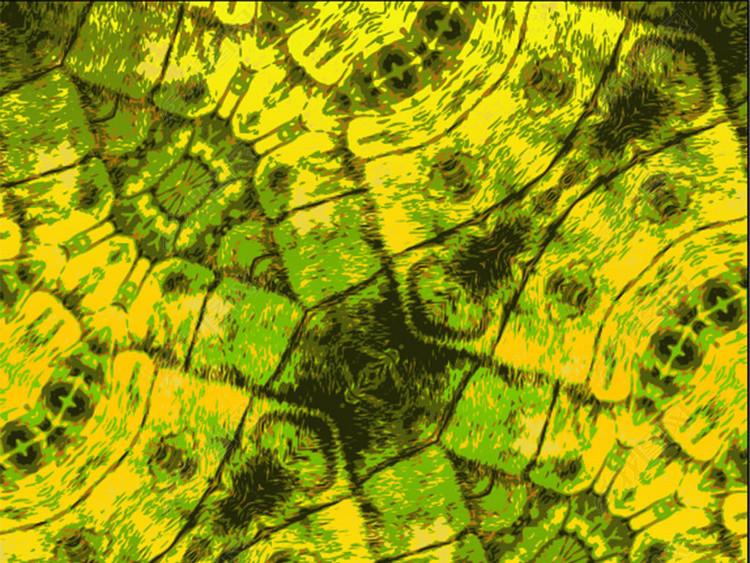 绿色抽象细胞纹理图案