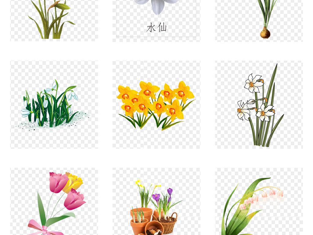 卡通手绘郁金香花卉花朵png素材