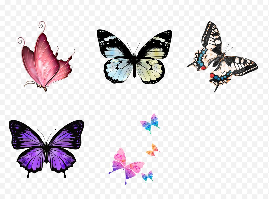 唯美手绘水墨蝴蝶彩色蝴蝶飞舞水彩动物素材
