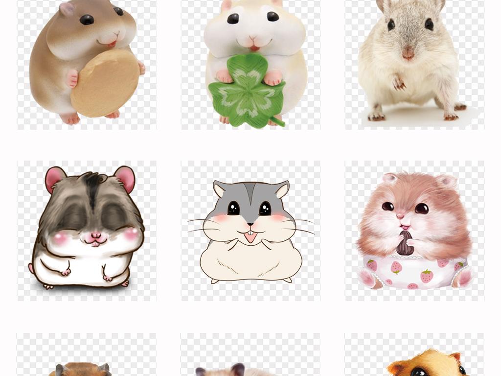 卡通可爱手绘仓鼠动物海鼠小仓鼠宠物海报png素材