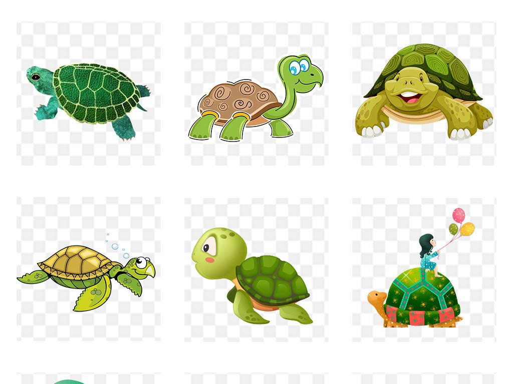 卡通乌龟png