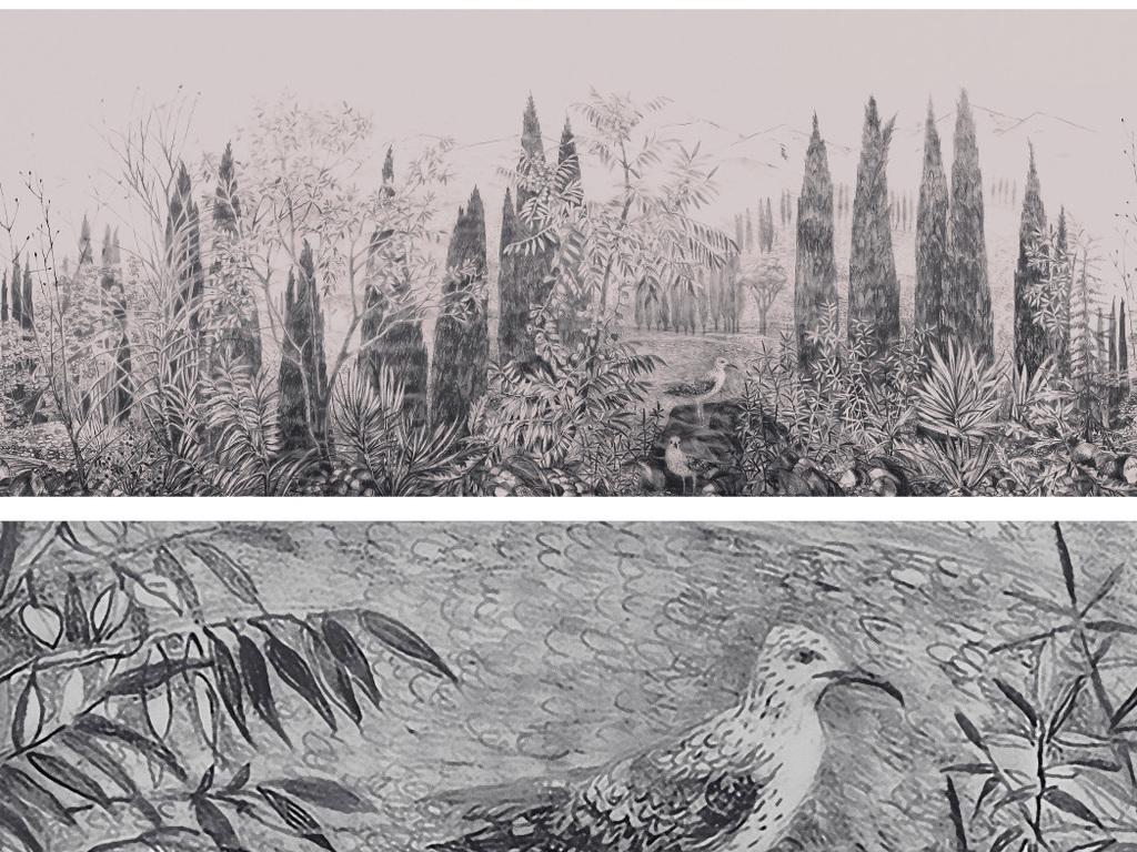 黑白手绘风景背景墙手绘叶树枝风景热带植物