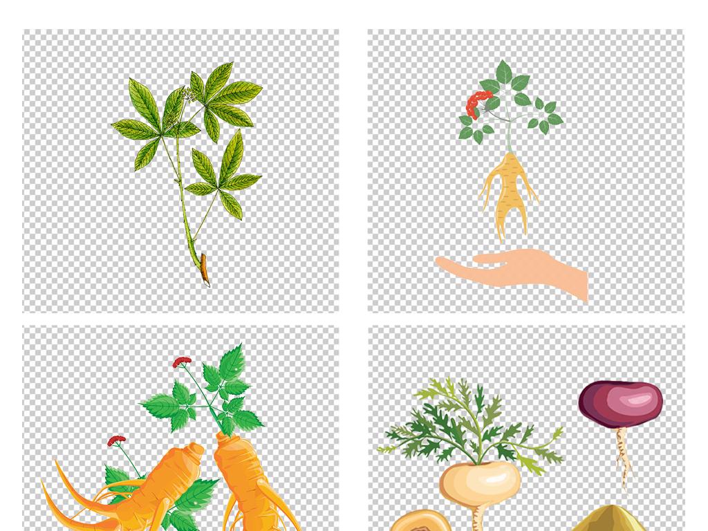 手绘卡通野山参西洋参人参png免扣素材图片 模板下载 5.16MB 食物饮品 大全 生活工作