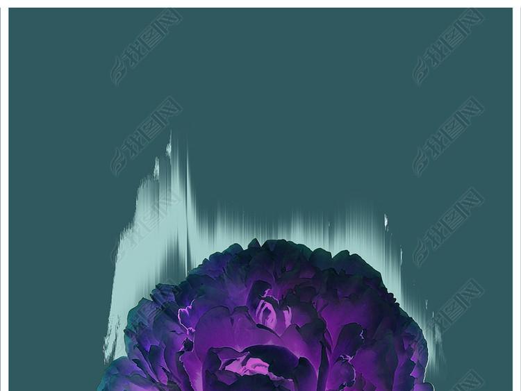 手绘植物花卉插画