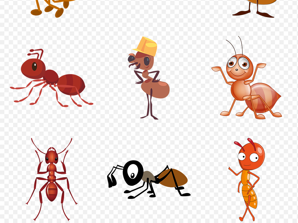蝙蝠动物蚂蚁幼儿园背景海报素材png萨摩亚2010银币卡通图片
