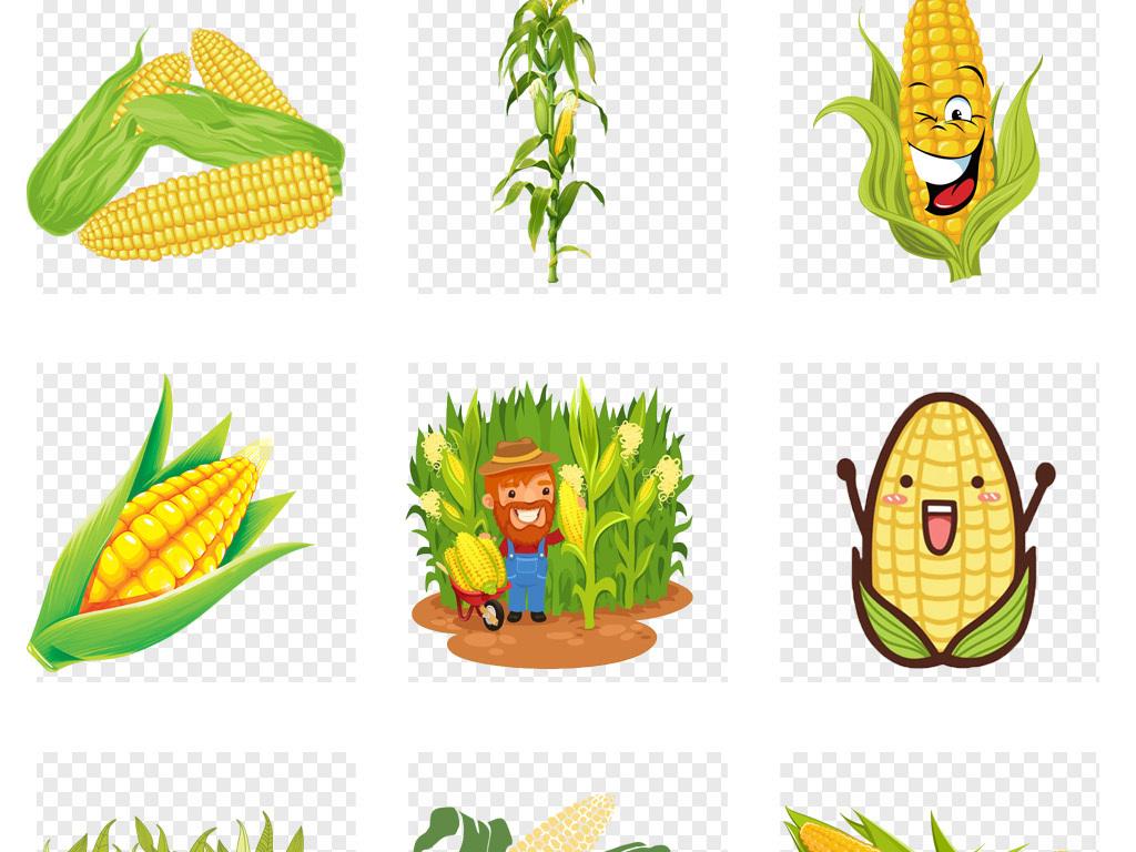 50款卡通手绘玉米食物海报png免扣素材