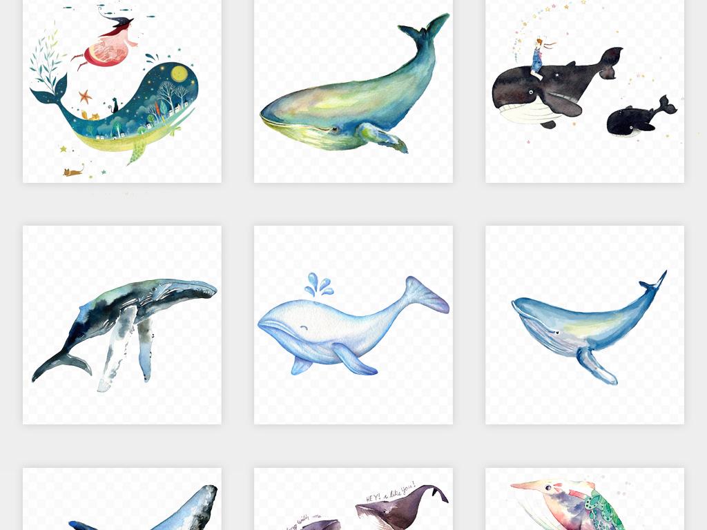 卡通可爱手绘海洋生物治愈系鲸鱼png免扣素材