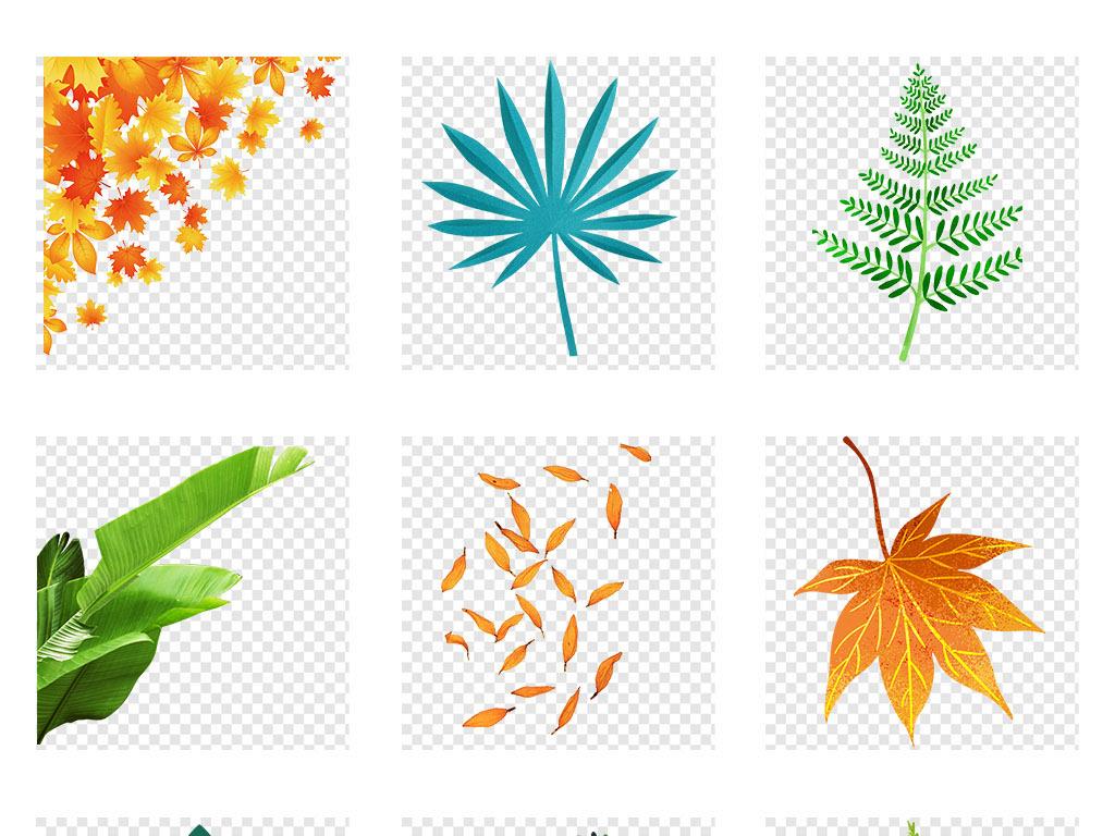 植物叶子绿色叶子边框叶子树叶热带水彩热带叶子素材绿色植物热带树叶