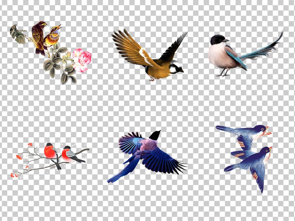 0920手绘水彩彩绘喜鹊水墨喜鹊鸟儿中国风喜鹊素材免抠