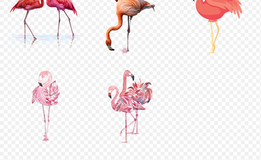 免抠元素 自然素材 动物 > 手绘可爱卡通火烈鸟海报素材背景png  素材