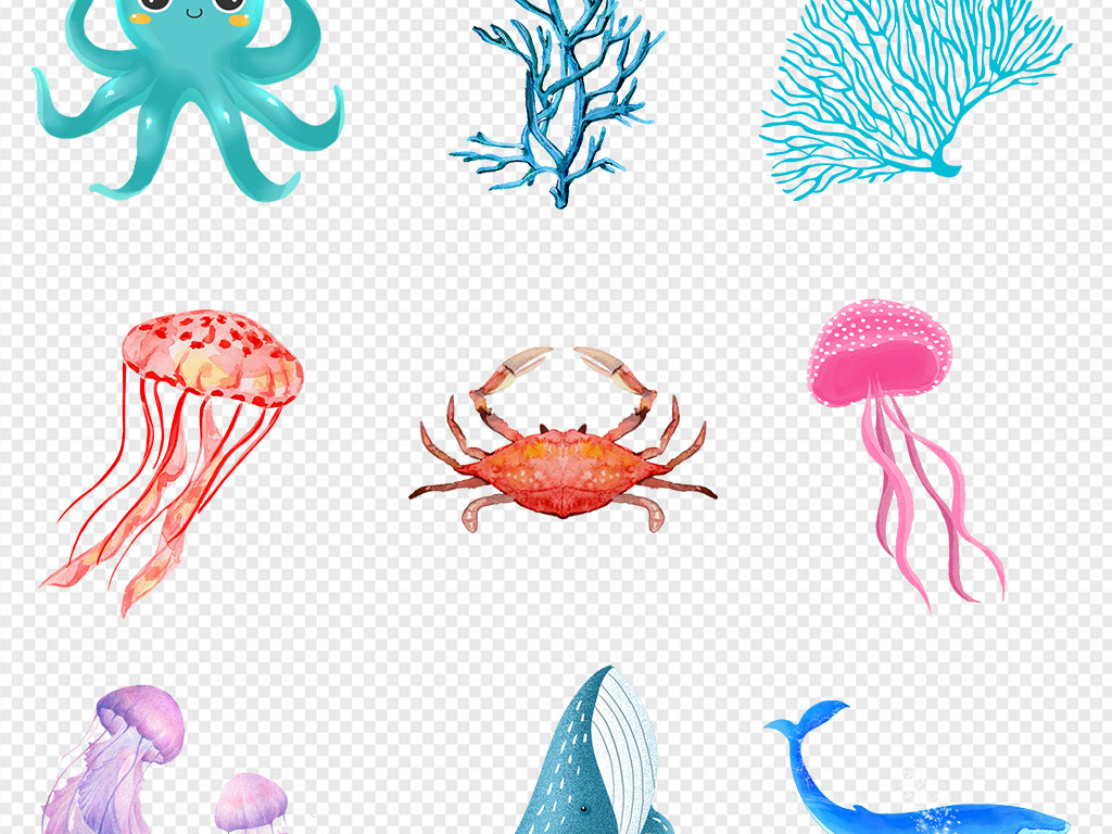 手绘画卡通可爱海洋动物海草气泡卡通章鱼卡通乌龟卡通海豚