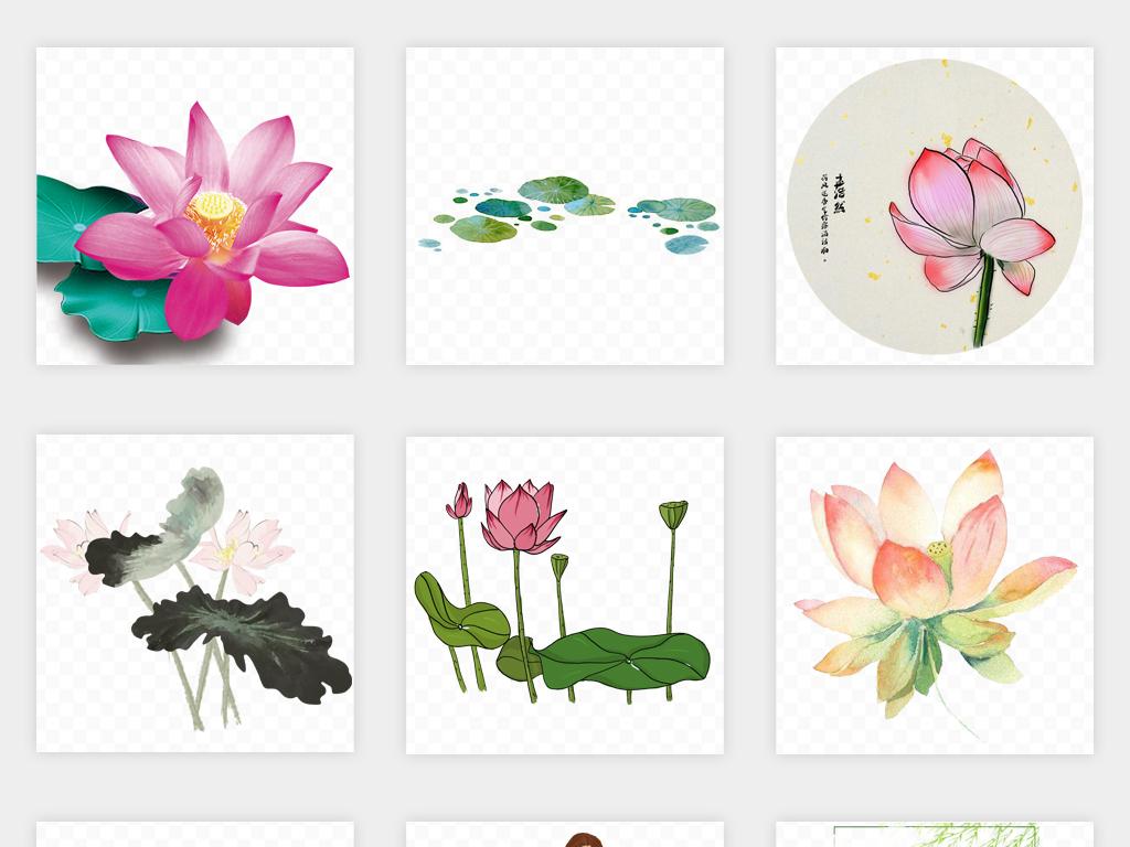 卡通手绘夏季夏日荷花荷叶植物png免扣素材