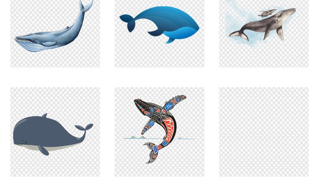 海豚黑白手绘素描