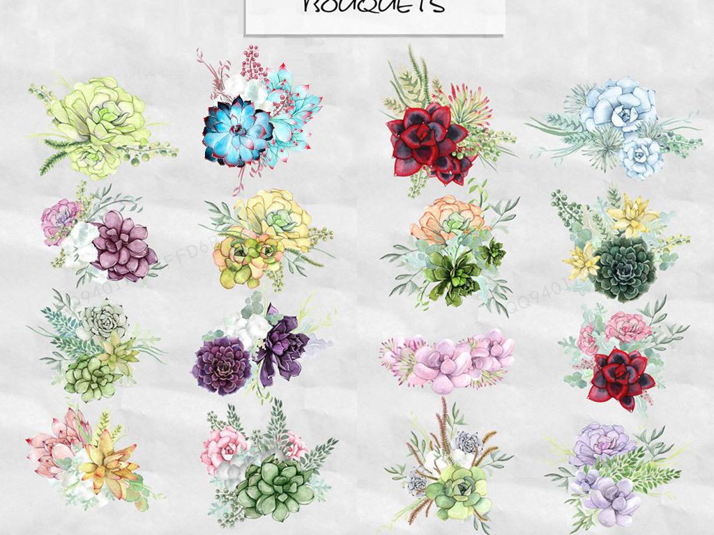 水彩手绘绿色紫色多肉植物png免抠素材图片_模板下载