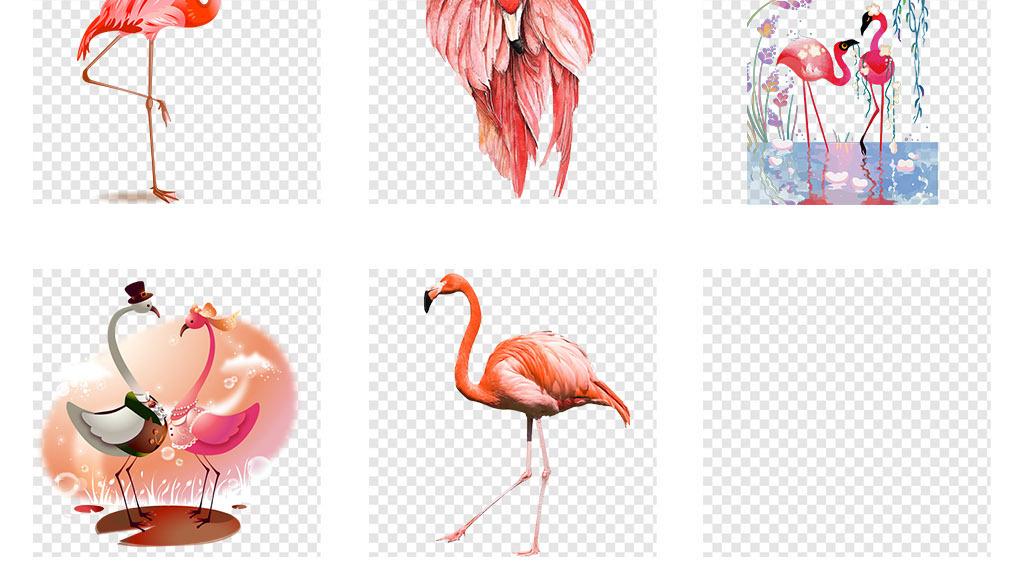 手绘森系火烈鸟插画背景墙壁画png素材