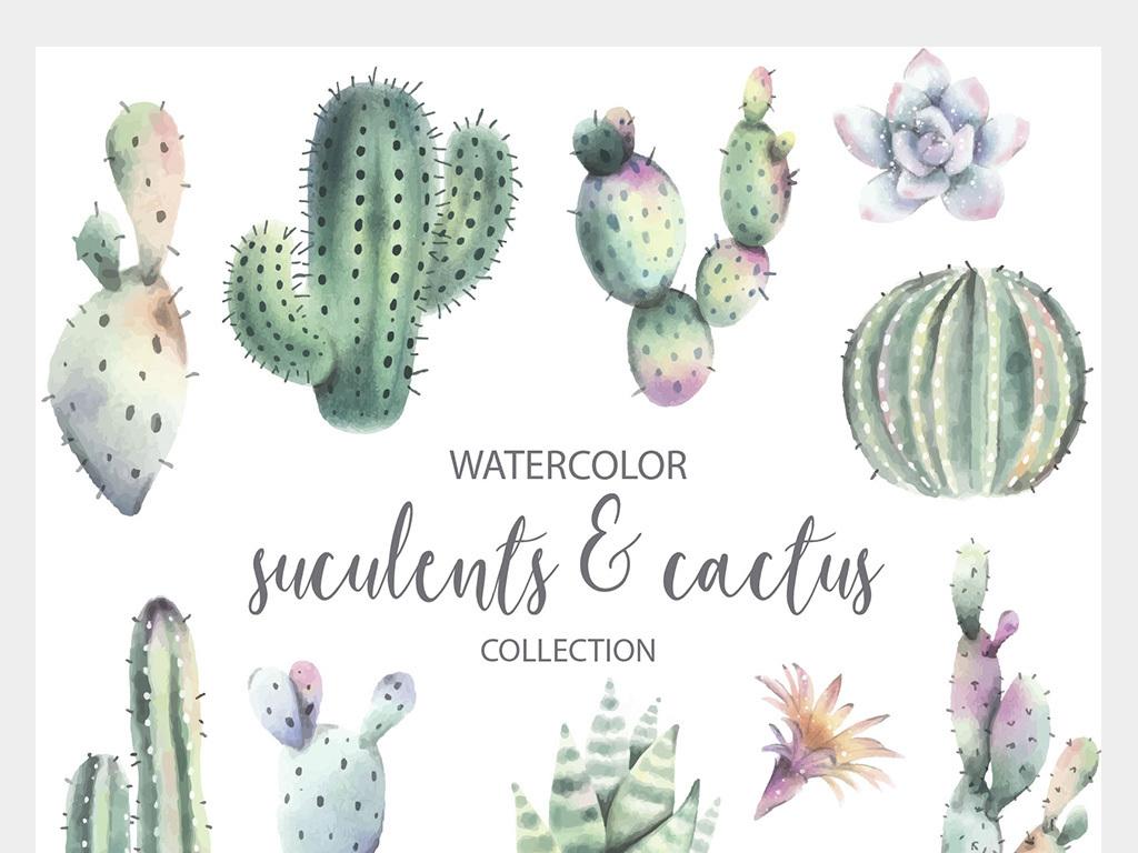 水彩手绘热带植物盆栽矢量图片