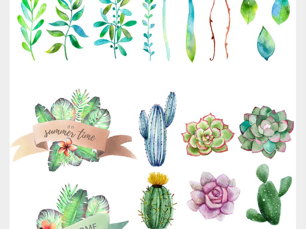 小清新手绘水彩多肉植物
