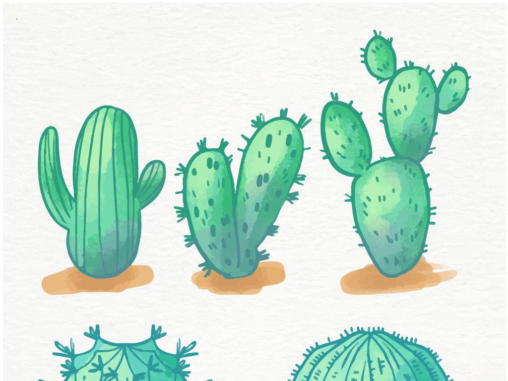 小清新简约手绘热带植物盆栽仙人掌盆栽