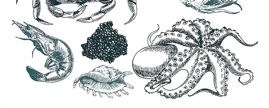 菜单设计手绘简笔画
