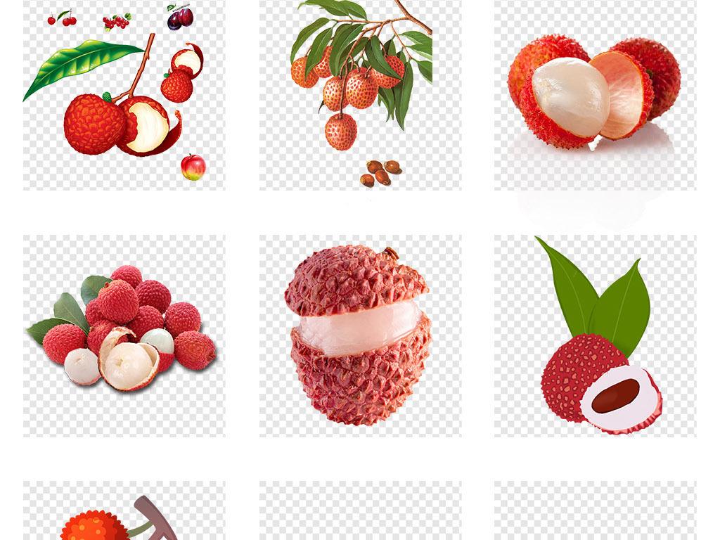 新鲜水果荔枝手绘荔枝png免抠素材元素