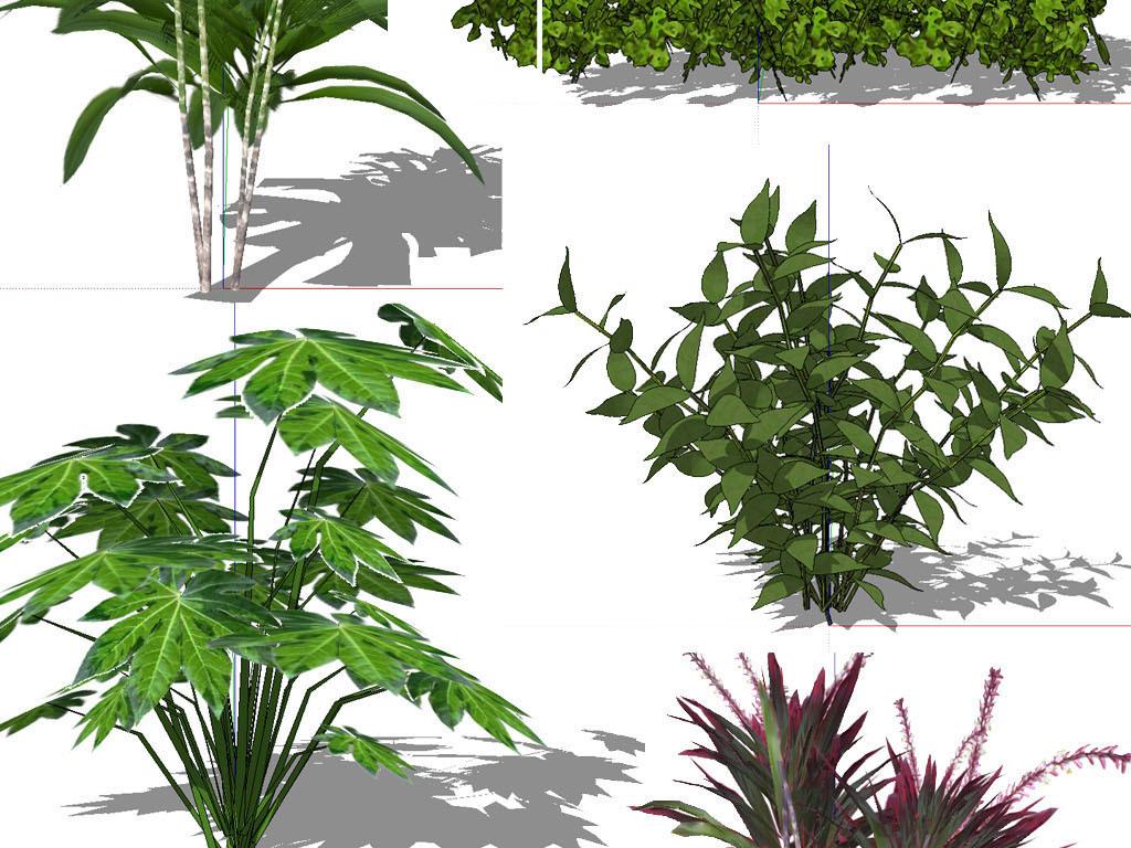 手绘绿植平面贴图