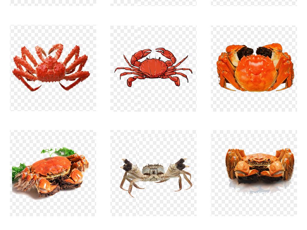 手绘卡通螃蟹美味螃蟹香辣蟹海鲜素材美食大闸蟹海鲜螃蟹海鲜美食河蟹
