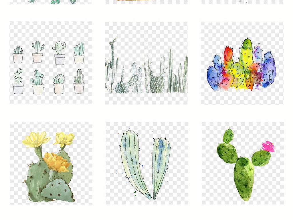 卡通手绘沙漠绿色植物仙人球仙人掌png