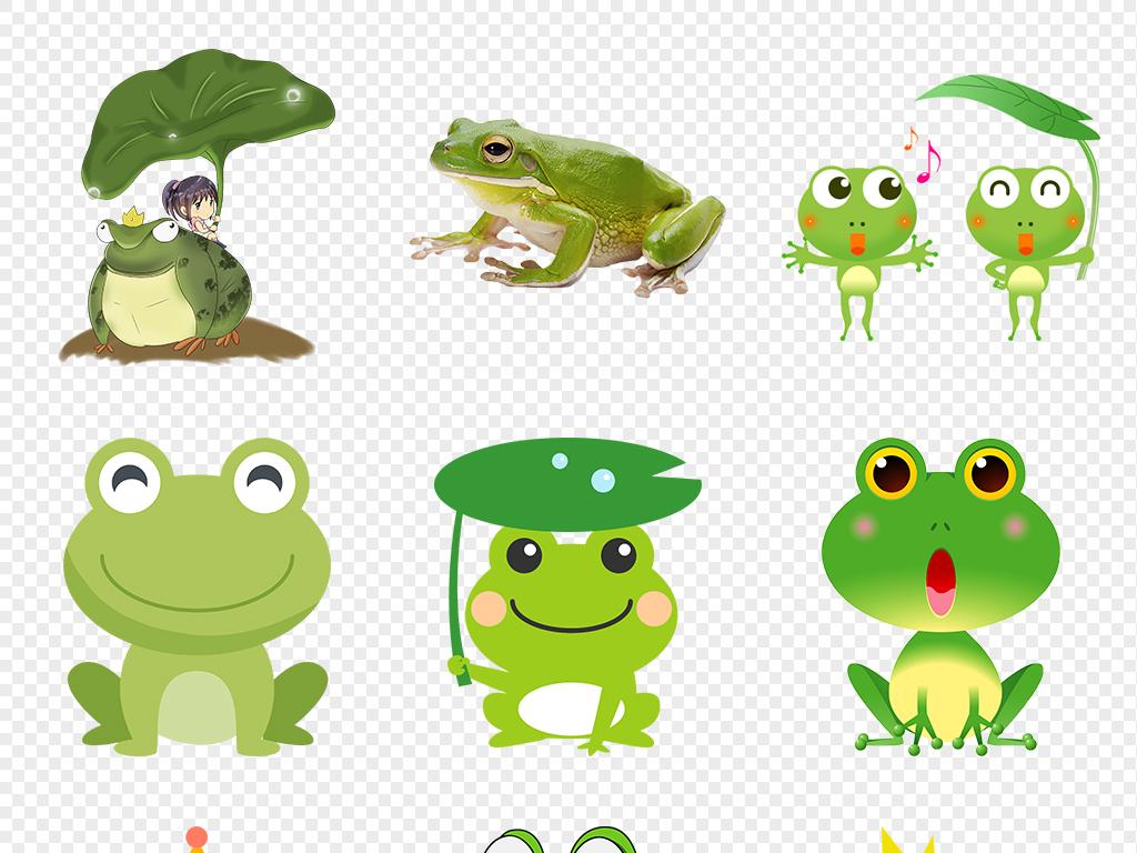 青蛙卡通图片青蛙荷叶