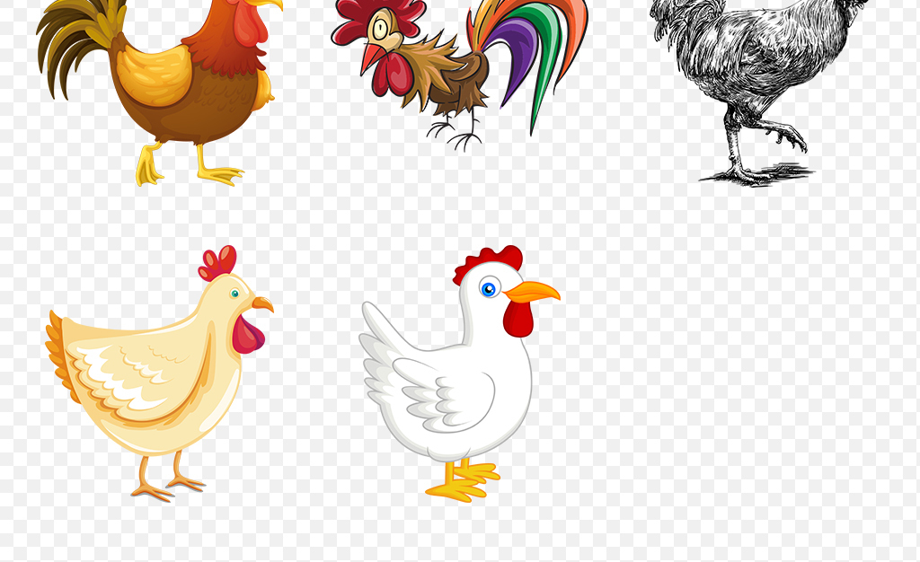 鸡年手绘水彩可爱卡通鸡海报素材背景png