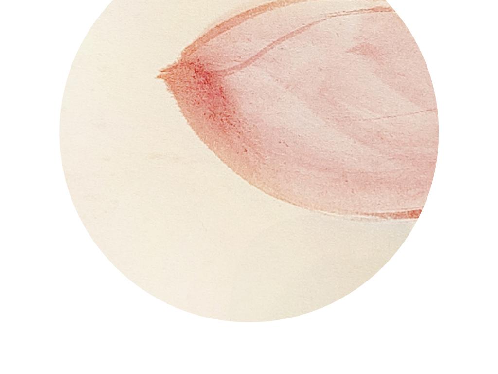 原创圆形水墨荷花装饰画手绘工笔荷花无框画
