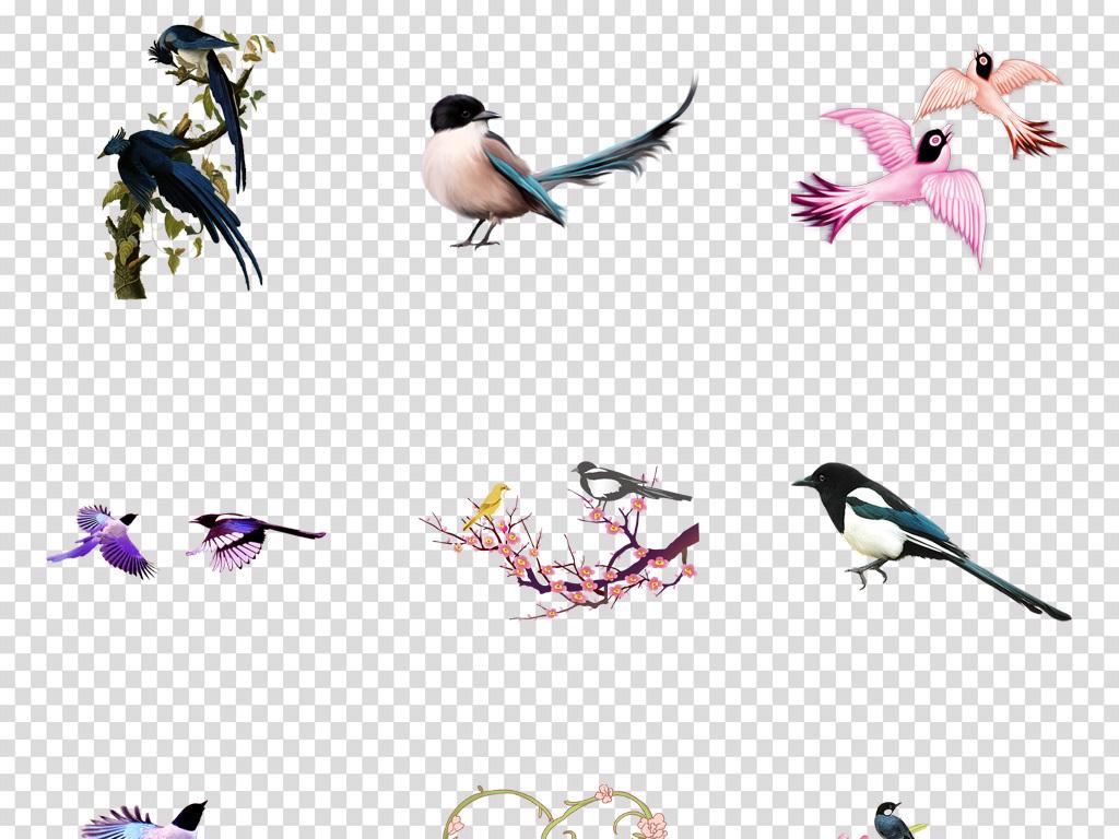 水彩手绘麻雀唯美卡通手绘工笔画素材七夕素材喜鹊工笔画花鸟情人节素