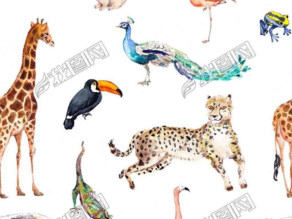 手绘动物长颈鹿猎豹孔雀大嘴鸟食蚁兽变色龙图案衣服布料纹理图案