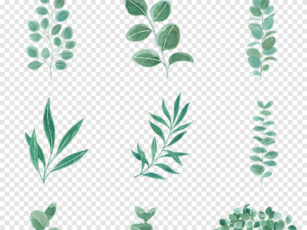 森系小清新插画手绘插画树叶绿植水彩手绘树叶手绘卡通卡通手绘手绘