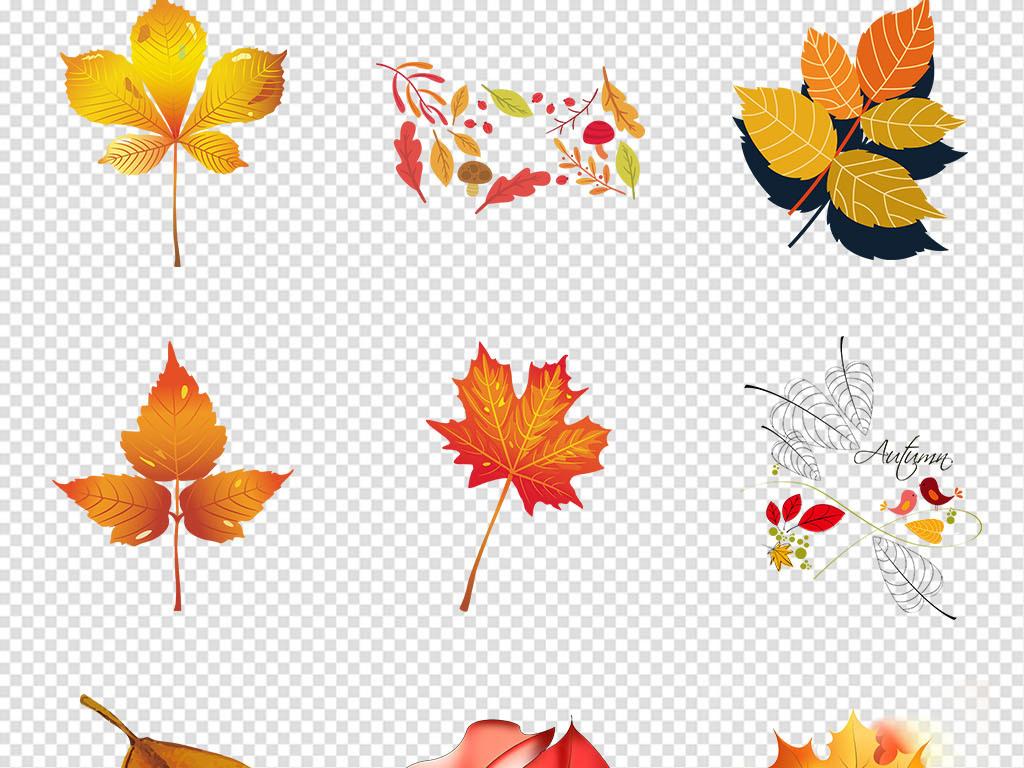 秋季手绘唯美叶子落叶枫叶树叶png素材