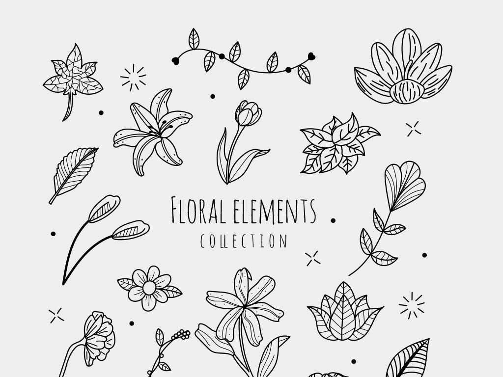 百合花小清新插图线条花朵黑白素材元素矢量手绘