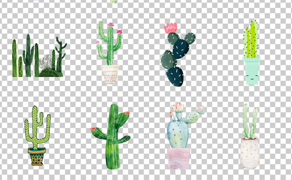 01082手绘植物仙人掌绿色小清新仙人球盆栽素材免抠