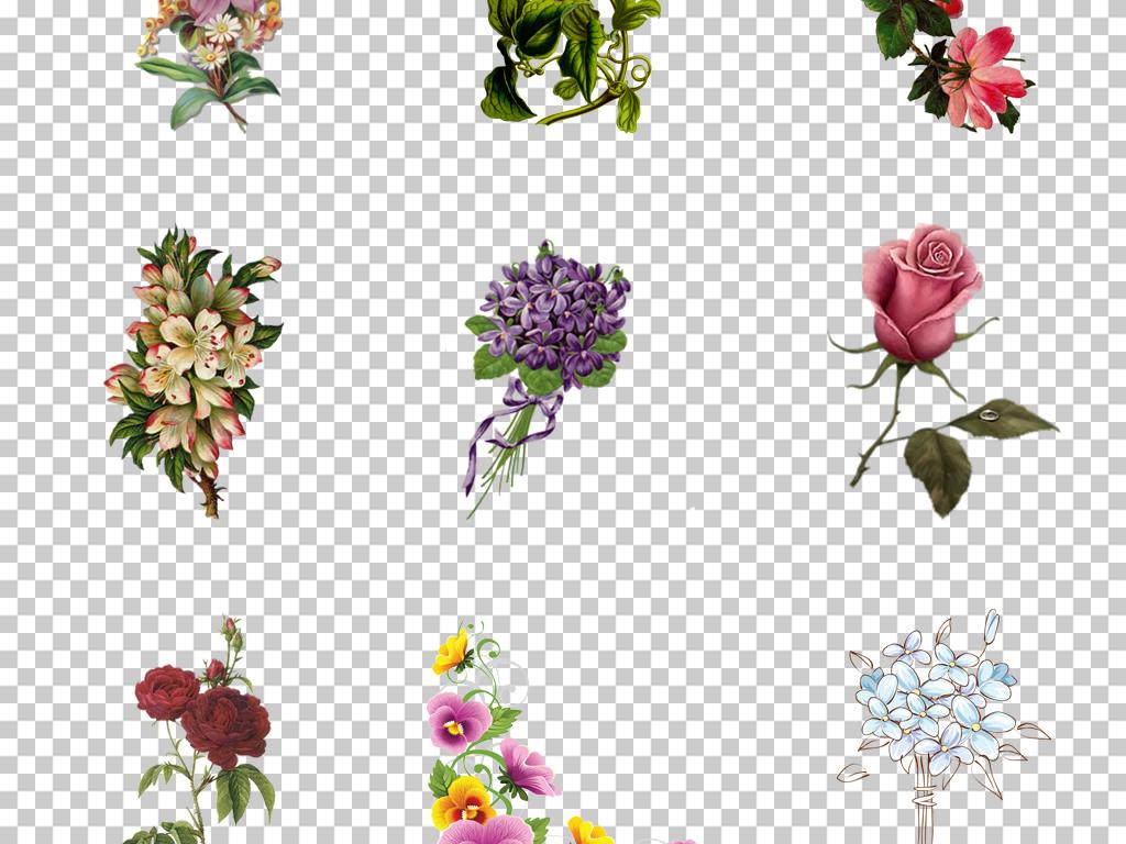 植物手绘花朵手绘素材复古手绘花花卉水彩手绘花花朵手绘花卉复古花卉