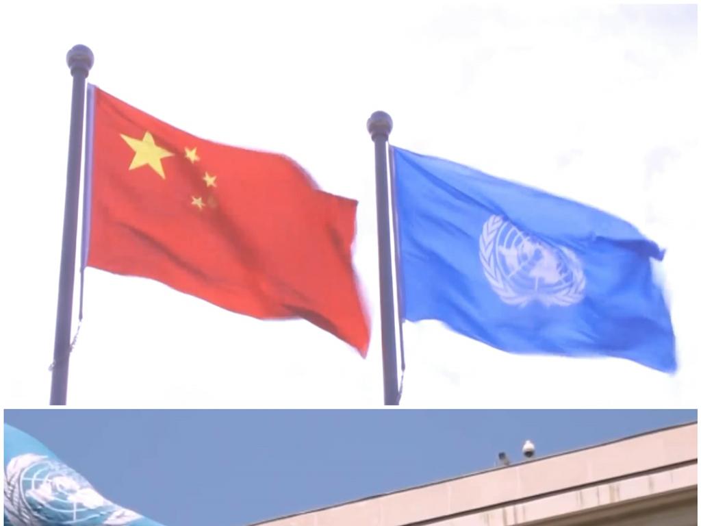 中国联合国成员国众多国旗飘扬高清视频素材
