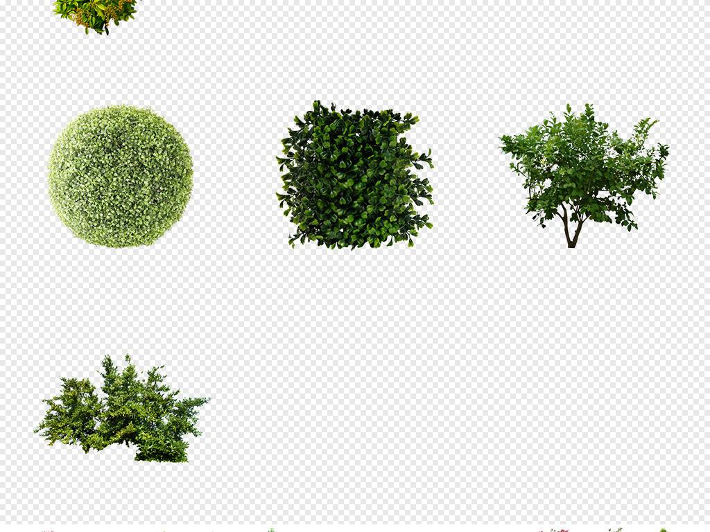 灌木丛简笔画小灌木丛矮灌木丛灌木丛手绘平面图灌木