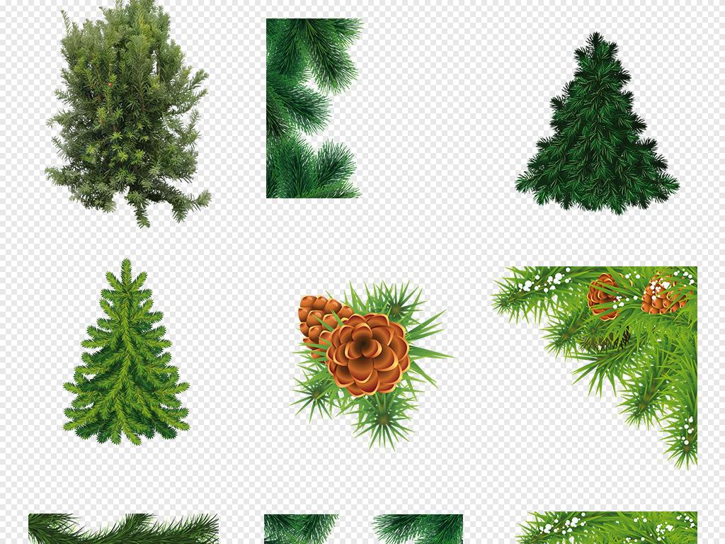 手绘插画素材杉树树木png透明背景透明背景花草花草背景png背景背景