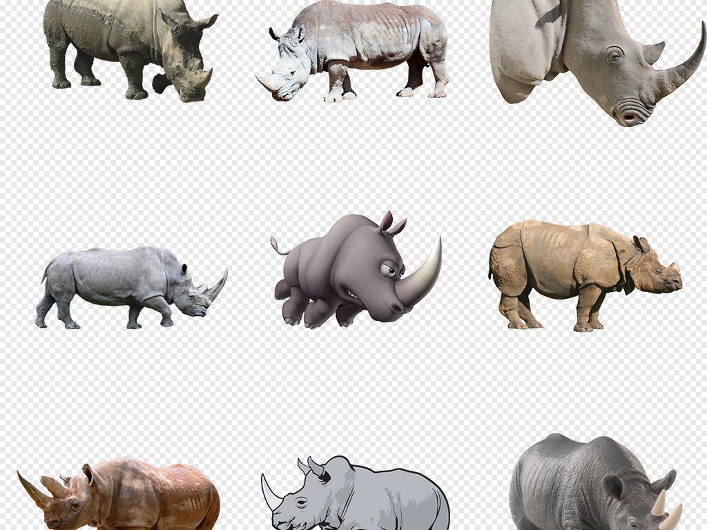 卡通手绘幼儿园贴纸犀牛动物设计海报背景png免
