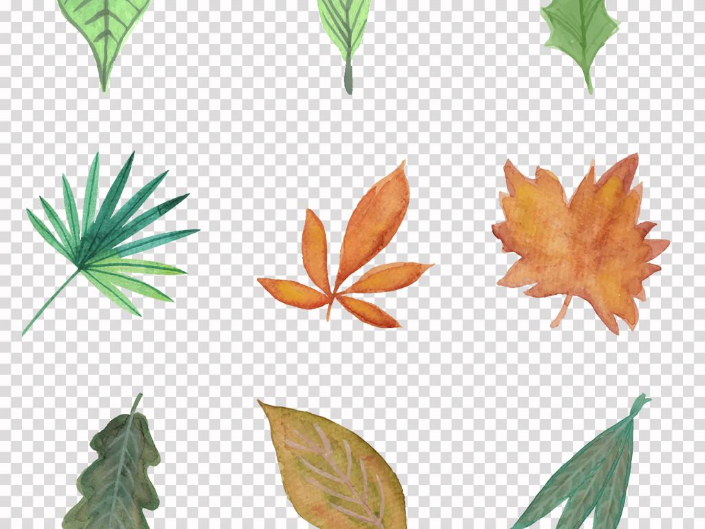 小清新水彩绿色树叶手绘森系北欧热带叶子背景png素材