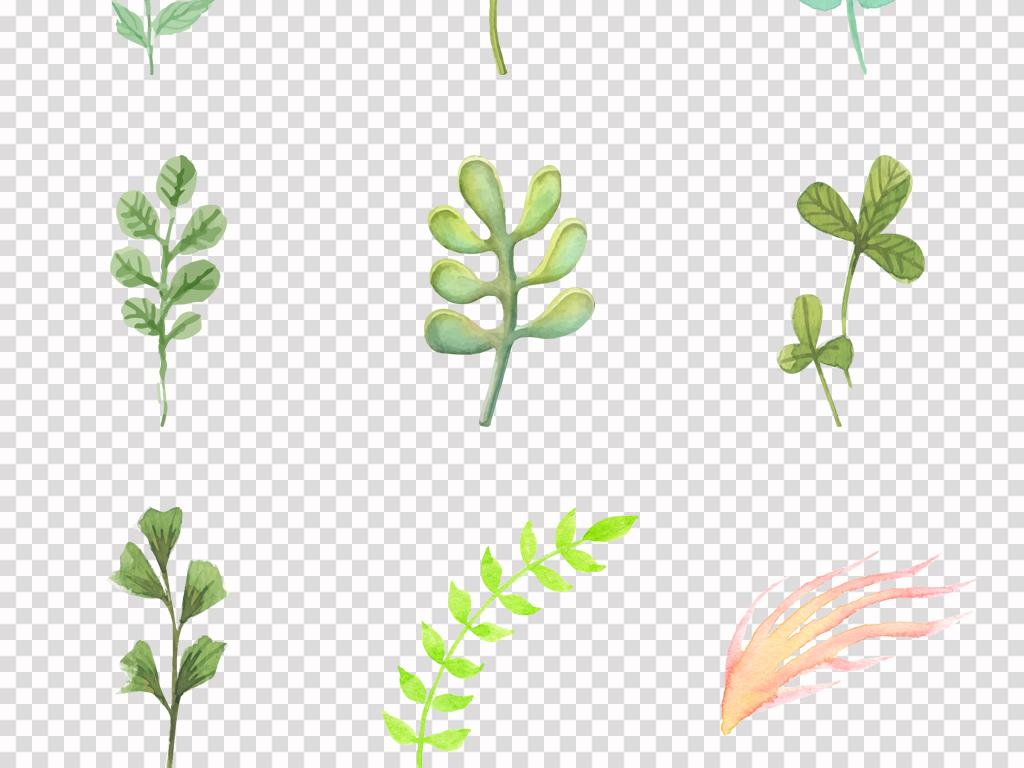 小清新水彩绿色树叶手绘绿色叶子插画背景png素材