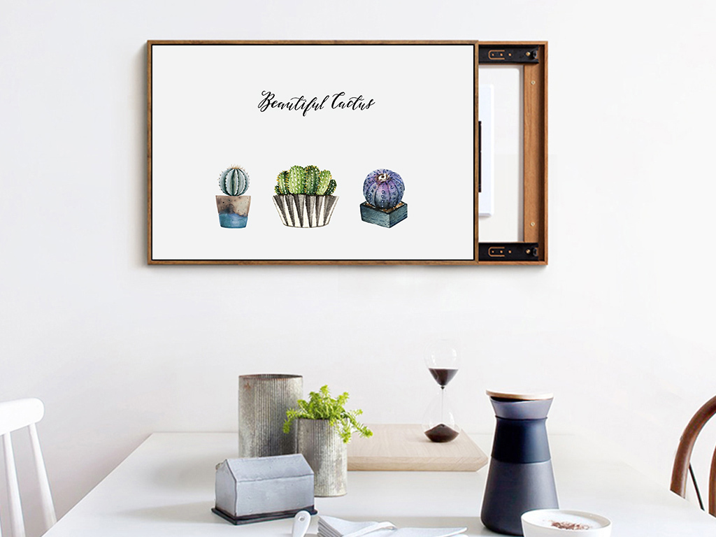 北欧ins手绘仙人掌植物电表箱装饰画