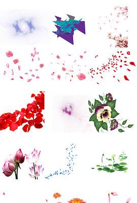 紫色花瓣图片素材 紫色花瓣图片素材下载 紫色花瓣背景素材 紫色花瓣模板下载 我图网