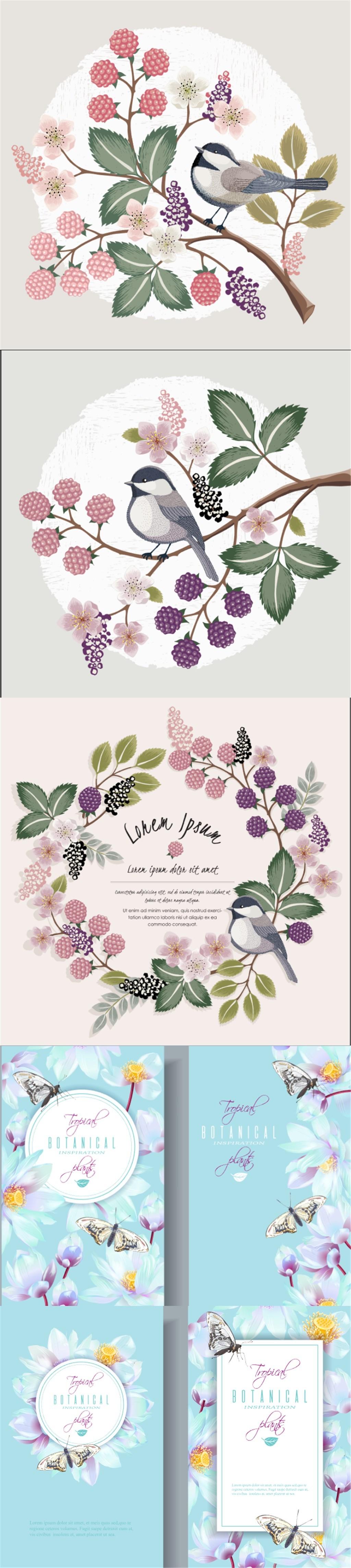 手绘花鸟植物花卉装饰图案图片设计素材_高清eps模板